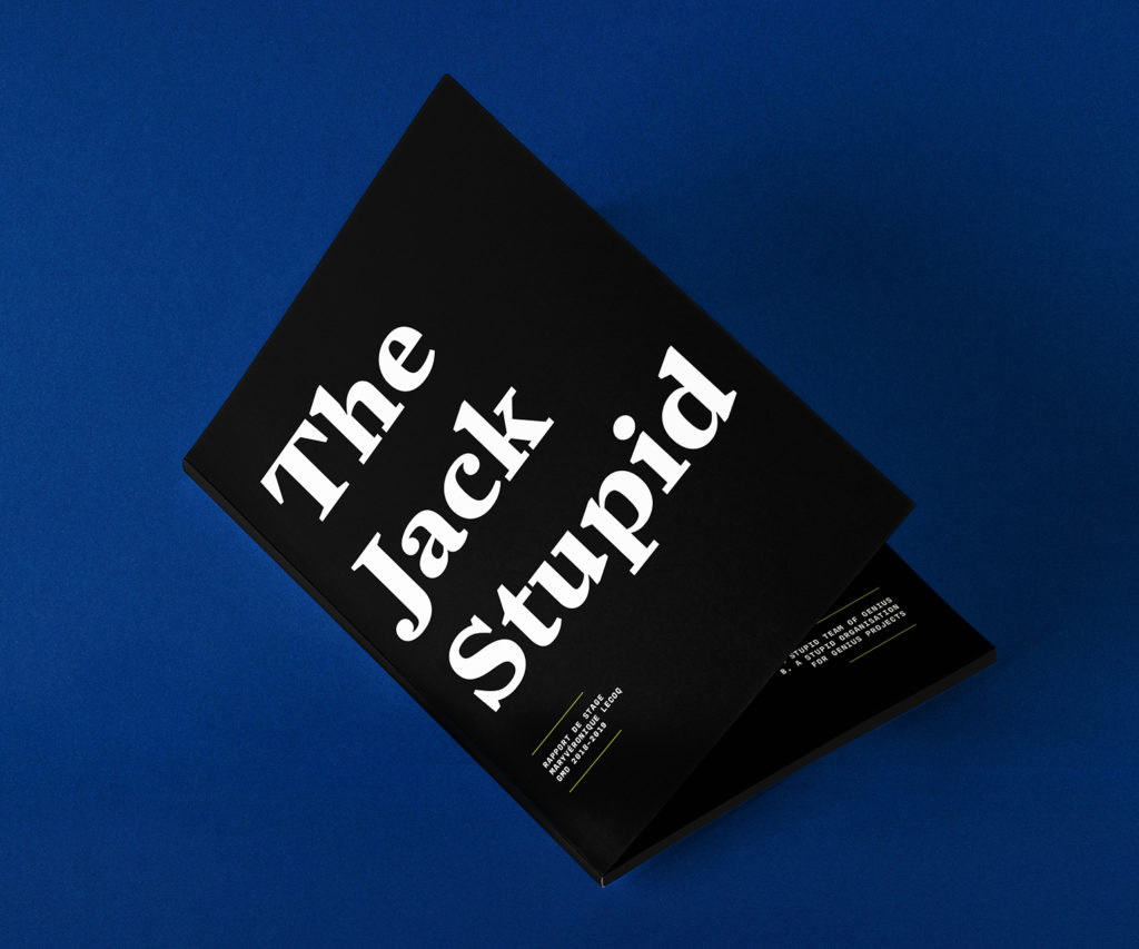 The Jack Stupid – Rapport de stage